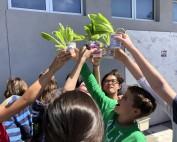 kids holding lettuce